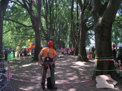Campionato Europeo Tree Climbing 2015